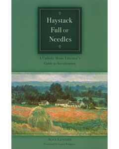 Haystack Full of Needles